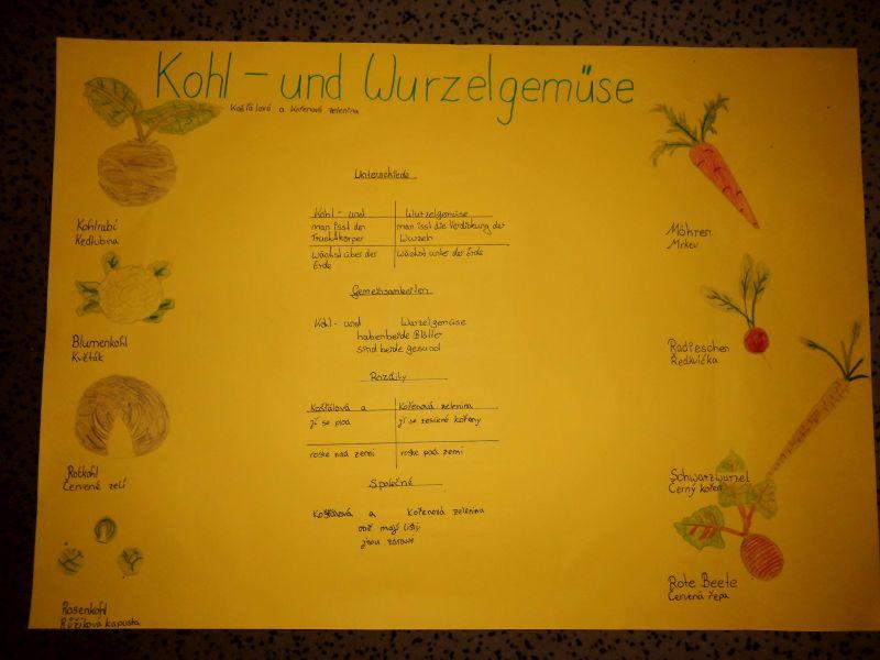 """Kooperationsprogramm """"Nutzpflanzen und deren Verwendung ..."""